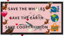 Save The Whales bumper sticker.png
